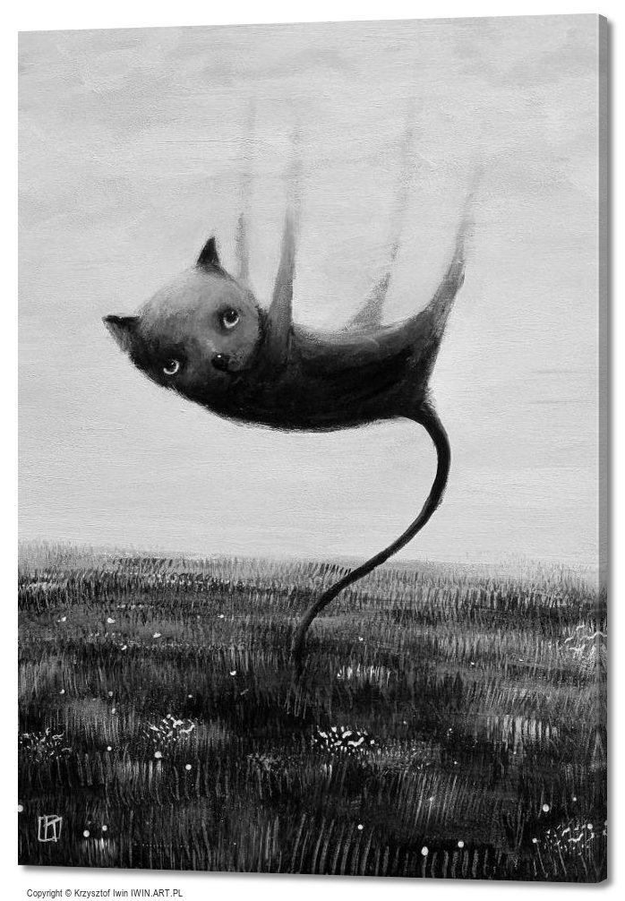 Cat who was suspended (20x28″)