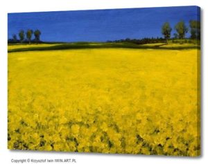 Rapeseed fields (16x12″)