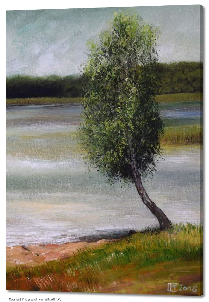 Birch Lake ChechloNaklo (20x28″)