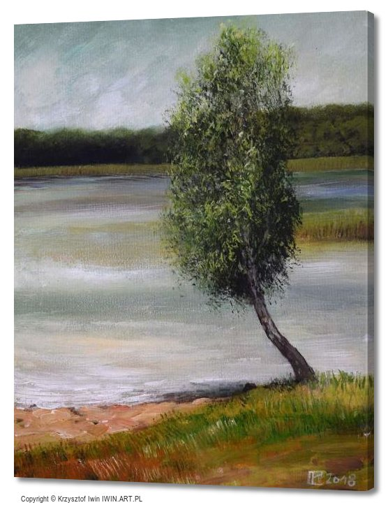 Birch Lake ChechloNaklo (16x20″)